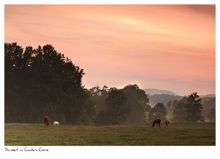 Click to purchase: Sunset in Cade's Cove
