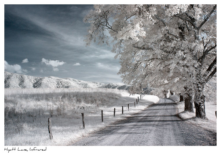 Click to purchase: Hyatt Lane, Cades Cove, Infrared