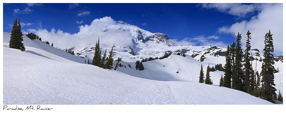 Click to purchase: Paradise, Mount Rainier
