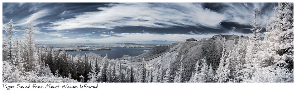 Click to purchase: Puget Sound from Mount Walker, Infrared